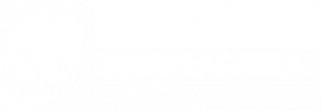 tokyo-01.png